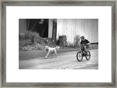 A Boy And His Dog Bw Framed Print by Phyllis Taylor