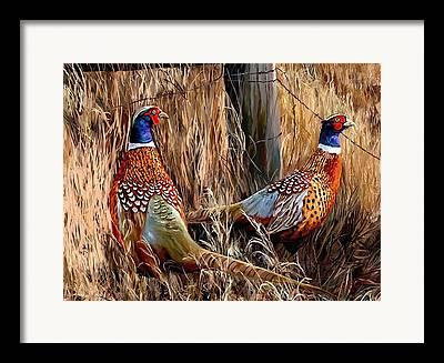 Artbyjames Framed Prints