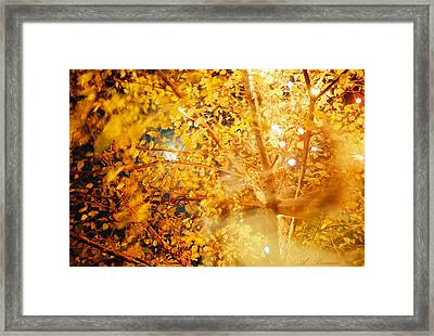 A Breath Of C'hi Framed Print