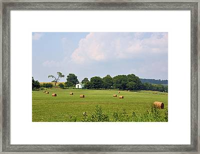 A Breath Of Fresh Air Framed Print by Jan Amiss Photography