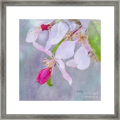Framed Print featuring the photograph A Breath Of Spring by Betty LaRue