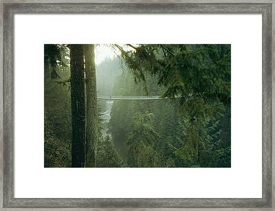 A Bridge Spans A Salmon Spawning River Framed Print by Taylor S. Kennedy