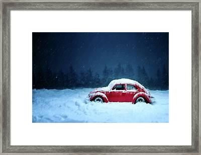 A Bug In The Snow Framed Print