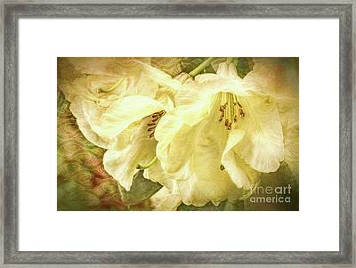 Framed Print featuring the photograph A Bunch Of Birthday Wishes by Jean OKeeffe Macro Abundance Art