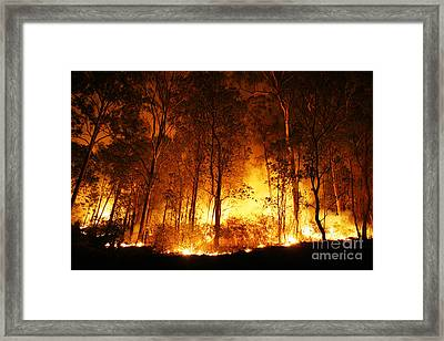 A Bushfire Burning Orange And Red At Night. Framed Print by Caio Caldas