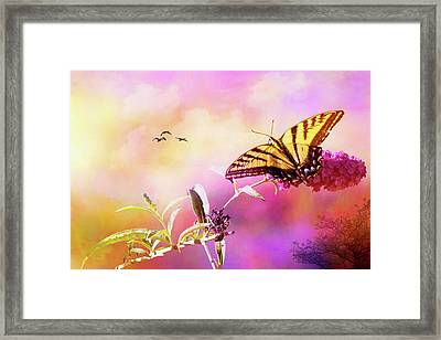 A Butterfly Good Morning Framed Print