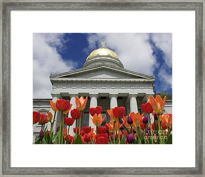 A Capitol Day Framed Print by Alice Mainville