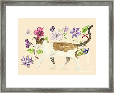 A Cat Called Dave Framed Print