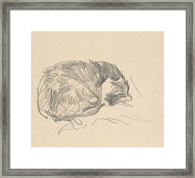 A Cat Curled Up, Sleeping Framed Print