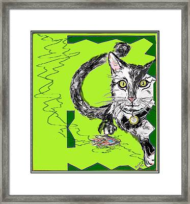 A Cat Framed Print