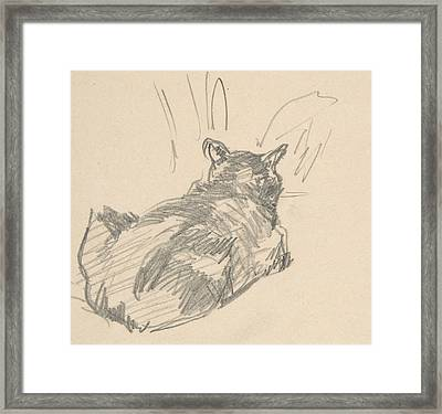 A Cat Resting On All Fours, Seen From Behind Framed Print