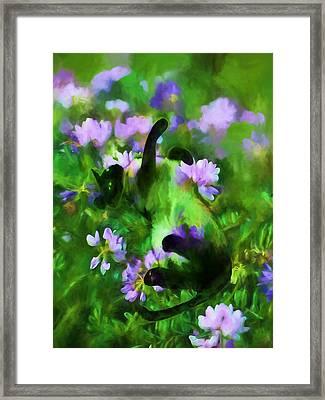 A Cat's Dream Framed Print