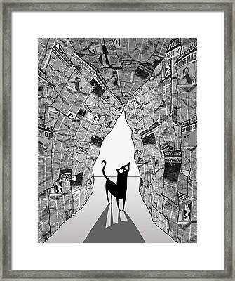 A Cat's Eye View Framed Print by Andrew Hitchen