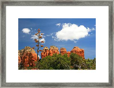A Century Above Framed Print by Miles Stites