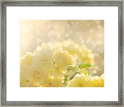 A Chance Of Showers Framed Print by Amy Tyler