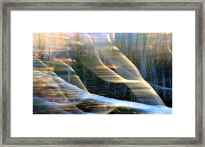 A Changing Habitat Framed Print by Shirley Sirois