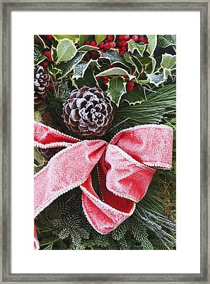 A Christmas Decoration Framed Print by Craig Tuttle