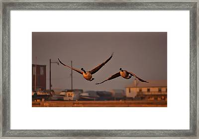 A Cinematic Moment Framed Print