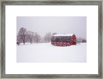 A Classic New England Red Cow Barn In A Blizzard Framed Print by Edward Fielding