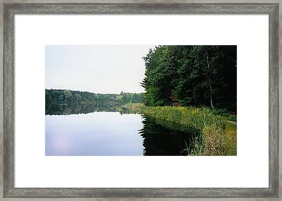 A Clear Day Framed Print by Tom Hefko