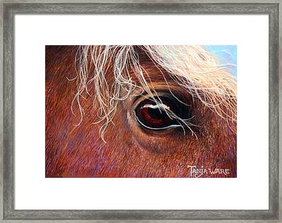 A Closer Look Framed Print by Tanja Ware