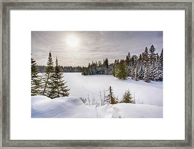 A Cold Algonquin Winters Days  Framed Print