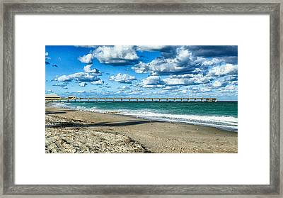 A Cold Day In Florida 62f Framed Print by Dieter Lesche