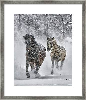 Framed Print featuring the photograph A Cold Winter's Run by Wade Aiken