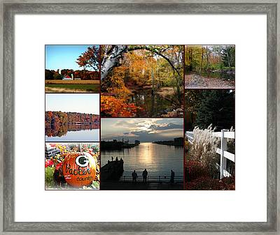 A Collage Of Autumn Framed Print by Kay Novy