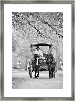 A Colonial Carriage In Black And White Framed Print by Rachel Morrison