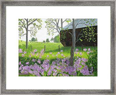 A Color Stands Abroad Framed Print