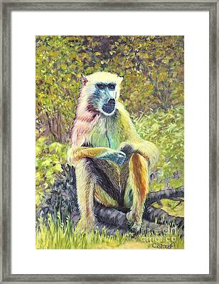 A Colorful Character Framed Print by Caroline Street