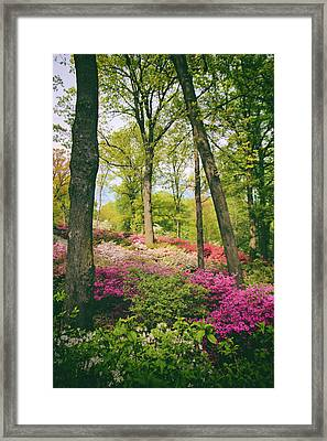A Colorful Hillside Framed Print by Jessica Jenney