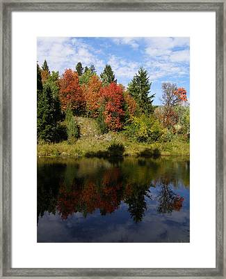Framed Print featuring the photograph A Colorful Reflection by DeeLon Merritt