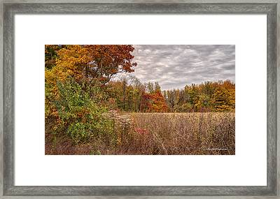A Colorful Vista Framed Print by Wendell Thompson
