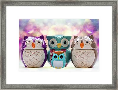 A Colourful Parliament Of Owls Framed Print