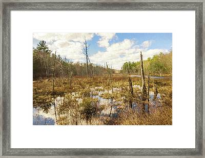 A Connecticut Marsh Framed Print