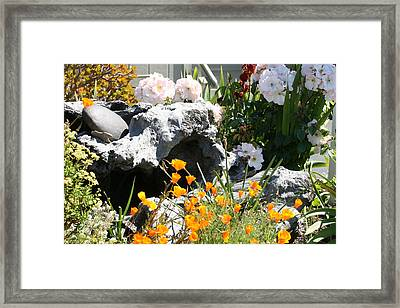 A Corner Of Peace Framed Print by Wendi Curtis