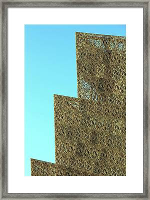 The Symbolic Lattice That Surrounds The National Museum Of African American History And Culture Framed Print by Cora Wandel