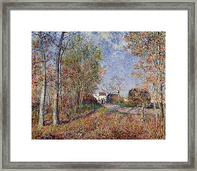 A Corner Of The Woods At Sablons Framed Print by Alfred Sisley