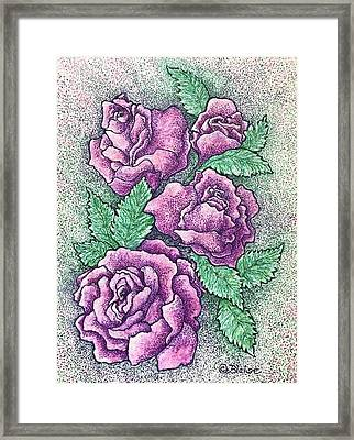 Lo, How A Rose Framed Print