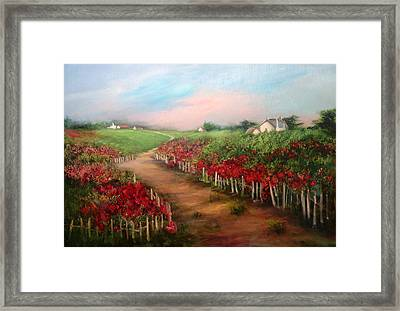 A Country Lane Framed Print by Sally Seago