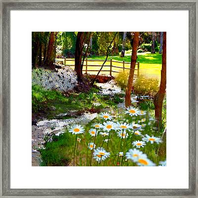 A Country Stream With Wild Daisies Framed Print