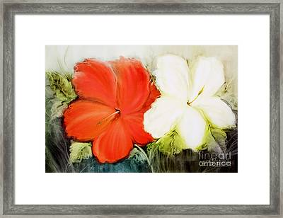 A Couple Of Flowers Framed Print by Fatima Stamato