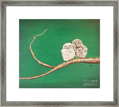 A Couple Of Owls Framed Print
