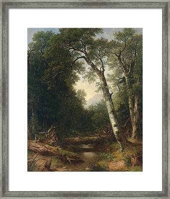 A Creek In The Woods Framed Print