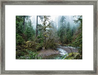 A Creek Runs Through It Framed Print