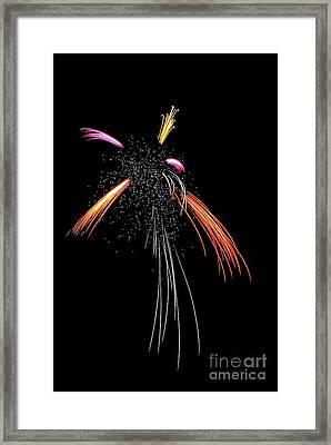 A Dance Of Light 4871 Framed Print by Ken DePue