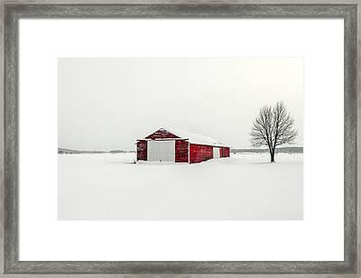 A Darker Kind Of Red Framed Print by Todd Klassy