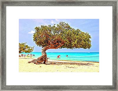 Framed Print featuring the photograph A Day At Eagle Beach by DJ Florek